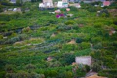 Opinião famosa da costa de Amalfi da cidade do cliffside de Ravello, Itália fotos de stock royalty free