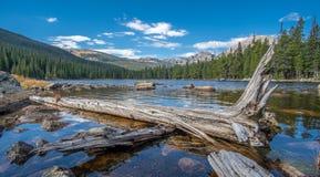Opinião Finch Lake e Rocky Mountains no fundo imagem de stock royalty free