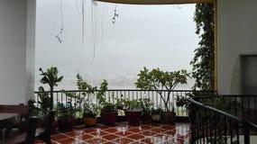 Opinião grande da chuva Fotos de Stock