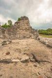 Opinião a iguana em ruínas maias no EL Rey Fotografia de Stock Royalty Free