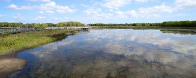 Opinião larga Cay Wetlands verde imagem de stock royalty free