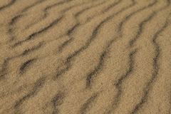 Opinião lateral da textura da areia, luz dourada foto de stock royalty free