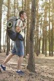 Opinião lateral do comprimento completo o caminhante masculino com trouxa que anda na floresta Foto de Stock Royalty Free