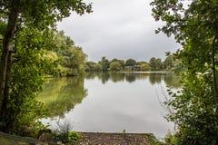 Opinião lateral do lago através das árvores Fotografia de Stock