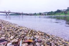 Opinião lateral do lago na manhã imagens de stock