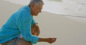Opinião lateral o homem caucasiano superior ativo que guarda uma concha do mar na praia 4k vídeos de arquivo