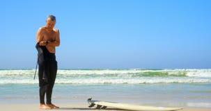 Opinião lateral o surfista masculino caucasiano superior ativo que veste o terno molhado na praia 4k vídeos de arquivo