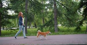 Opinião lateral a senhora atrativa que anda no parque com o cão adorável do inu do shiba vídeos de arquivo