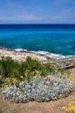 Opinião litoral de Majorca/Mallorca Cala Mesquida foto de stock royalty free