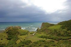Opinião litoral o Muelle De Las Almas, oceano no fundo, ilha de Chiloe, o Chile imagens de stock