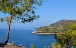 Opinião mediterrânea do litoral do mar da montanha das montanhas e dos pinhos imagens de stock royalty free