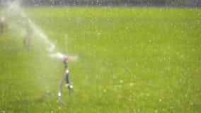 Opinião molhando do defocus do gramado do sistema de extinção de incêndios da irrigação do jardim do movimento lento vídeos de arquivo