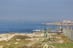 Opinião a mulher que toma imagens na passagem de madeira pedestre, na praia e no mar como imagem de stock