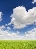 Opinião natural da paisagem imagens de stock