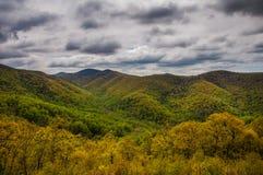 Opinião nebulosa da mola da movimentação da skyline no parque nacional de Shenandoah imagens de stock