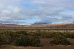 Opinião nebulosa de deserto de Atacama Foto de Stock Royalty Free