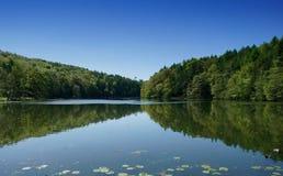 Opinião no Cotswolds, Gloucestershirre do lago foto de stock royalty free