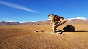 Opinião o Arbol de Piedra 'árvore de pedra ', uma formação de rocha isolada em Bolivi fotos de stock royalty free