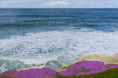 Opinião o Oceano Pacífico Imagens de Stock Royalty Free