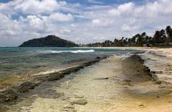 Opinião, palmeiras e rochas da praia; Ilha de palma, São Vicente e Granadinas. foto de stock royalty free