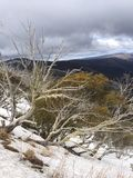 Opinião panorâmico de Alpes Foto de Stock Royalty Free