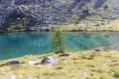 Opinião panorâmico de Alpes imagens de stock royalty free