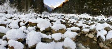 Opinião panorâmico do inverno Fotos de Stock Royalty Free