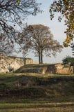Opinião panorâmico do por do sol da fortaleza de Belgrado e do parque de Kalemegdan no centro da cidade de Belg foto de stock royalty free