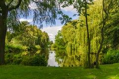 Opinião pequena do lago da cidade entre árvores Imagens de Stock