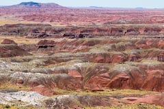 Opinião pintada do deserto Foto de Stock Royalty Free