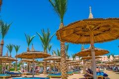 Opinião a praia e os veraneantes nos vadios nas costas da queimadura do Mar Vermelho no sol em férias fotos de stock royalty free