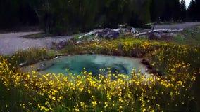 Opinião prismático grande da mola no parque nacional de Yellowstone foto de stock