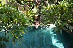A opinião superior aérea a mulher no assento do biquini relaxa na piscina da borda entre a palma e em árvores de cima de, tropica imagem de stock
