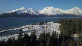 Opinião superior da árvore de Alaska filme