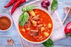 Opinião superior da goulash húngara no fundo ciano fotos de stock
