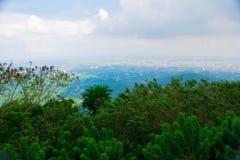 Opinião superior da montanha que negligencia as construções altas da cidade com o céu azul nebuloso e as folhas verdes das flores fotos de stock royalty free