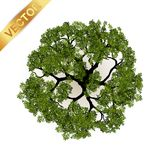 Opinião superior das árvores para a ilustração do vetor da paisagem Fotografia de Stock Royalty Free