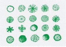Opinião superior das árvores para projetos de design da paisagem da arquitetura ilustração stock