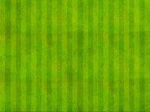 Opinião superior de campo de grama Imagem de Stock