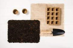 Opinião superior de ferramentas de jardinagem no fundo de madeira branco das pranchas Fotografia de Stock