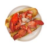 Opinião superior de placa de sanduíche da lagosta Fotografia de Stock