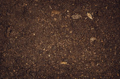 Opinião superior do fundo fértil da textura do solo do jardim foto de stock royalty free