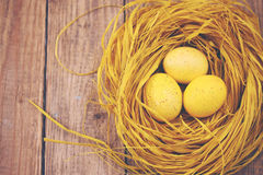 Opinião superior do ninho, matizada Imagem de Stock Royalty Free