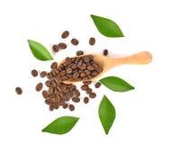 Opinião superior feijões de café na colher de madeira no fundo branco imagem de stock royalty free