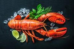 Opinião superior a lagosta vermelha inteira com gelo e cal imagem de stock royalty free