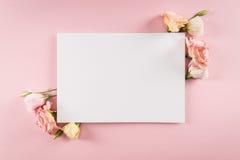 A opinião superior o eustoma vazio do cartão e da proposta floresce Imagem de Stock