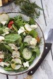Opinião superior orgânica da salada verde da mola Fotografia de Stock Royalty Free