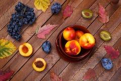 Opinião superior os pêssegos, as uvas e as ameixas da colheita Foto de Stock