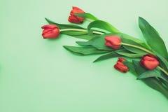 Opinião superior tulipas vermelhas brilhantes na luz - fundo verde com espaço da cópia Fotografia de Stock Royalty Free