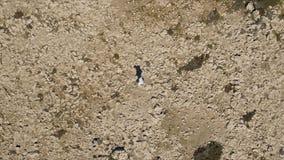 Opinião superior um homem que corre no deserto estoque O viajante à procura da aventura imagem de stock